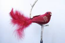 BURGUNDY  VELVET AND FEATHER BIRD ON CLIP