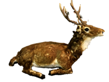 ANIMATED MUSIC SITTING DEER W/HEAD MOVING/BROWN COLOR