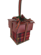 TARTAN GIFT BOX WITH BERRY/BRANCH ACCENT HANGER