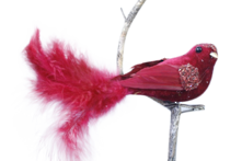 BURGUNDY  VELVET AND FEATHER BIRD ON CLIP (6)
