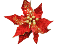 RED AND GOLD FLOWER
