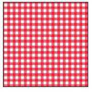 RED CHECK LUNCH NAPKIN