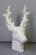WHITE REINDEER HEAD
