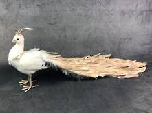STANDING WHITE/GOLD PEACOCK