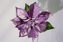 LIGHT PURPLE POINSETTIA