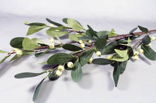 CREAM GREEN MISTLETOE SPRAY