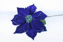 DARK BLUE VELVET POINSETTIA
