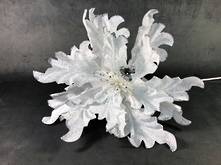 35CMD WHITE SILVER POINSETTIA