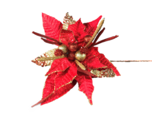 35CMD RED / GOLD SPIKY POINSETTIA