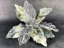 25CMD GREY POINSETTIA