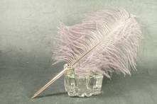 BALL POINT PEN WINE OSTRICH FEATHER