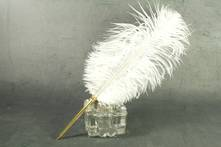 BALL POINT PEN WHITE OSTRICH FEATHER