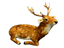 ANIMATED MUSIC SITTING DEER W/HEAD MOVING/DOTTED