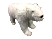 ANIMATED MUSIC POLAR BEAR W/HEAD MOVING