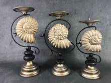 SET 3 SHELL CANDLE HOLDERS