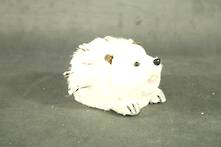 6.5CMH WHITE HEDGEHOG WITH TEXTURED BACK